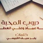 كلمات اغنية دروب المحبة زينه عماد