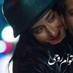 كلمات اغنية حلم حياتي وائل جسار